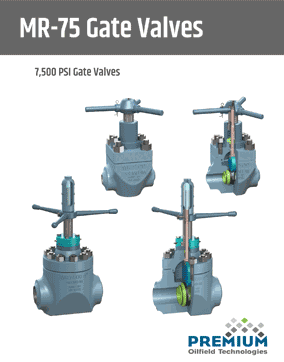 7500 psi Gate Valves